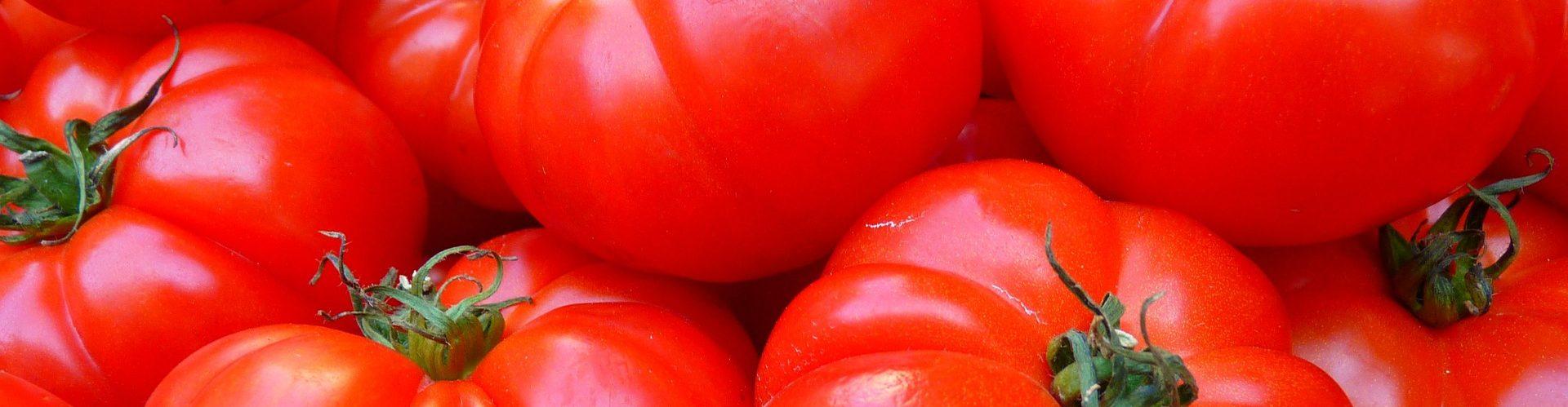 Диагностика патогенов овощных культур